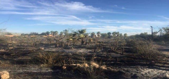 Photo of تارودانت: حريق مهول بجماعة سيدي بوموسى
