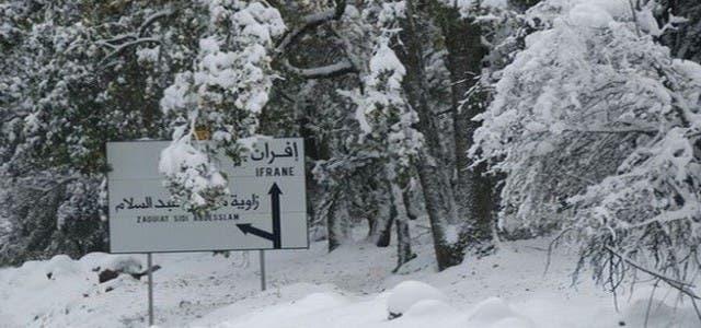 Photo of حجم التساقطات الثلجية المسجلة بالمملكة خلال الـ 24 ساعة الماضية