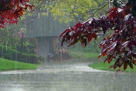 Photo of مقاييس التساقطات المطرية المسجلة خلال الـ24 ساعة الماضية