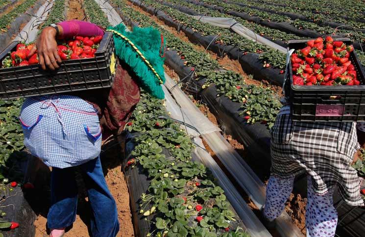 Photo of منظمة نسائية تؤكد تعرض عاملات مغربيات للاستغلال الجنسي
