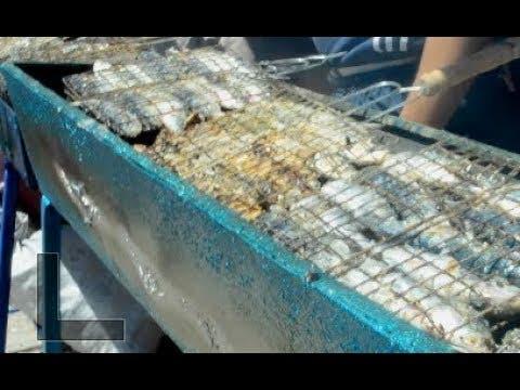 """Photo of بعد أكبر """"طاجين"""".. 4 أطنان من السمك تشوى في أسفي كأكبر """"وليمة سردين"""" على الصعيد الوطني"""