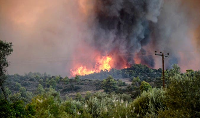 Photo of إسبانيا .. السيطرة على حريق غابوي بإقليم فلانسيا