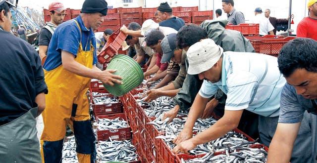 """Photo of وفد برلماني أوروبي يحل بالداخلة لمعاينة """"تأثيرات وفوائد اتفاق الصيد البحري"""""""