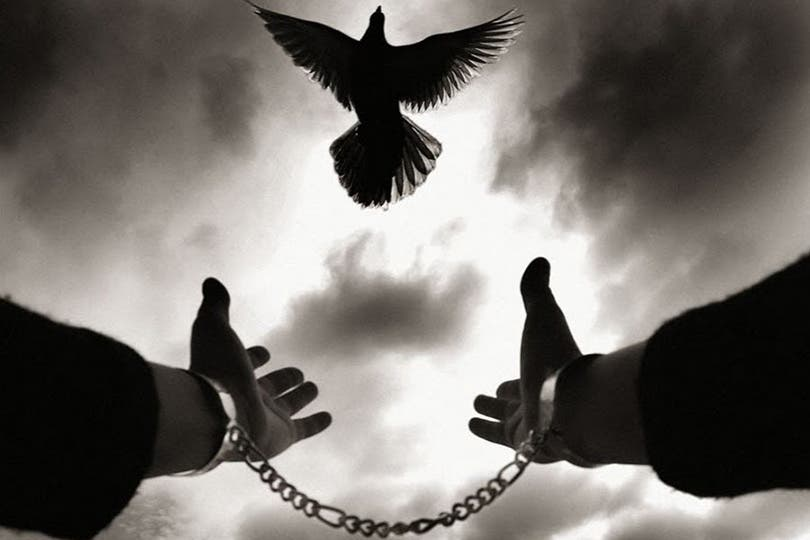 Photo of الحرية حينما تتحول إلى فوضى وعربدة !
