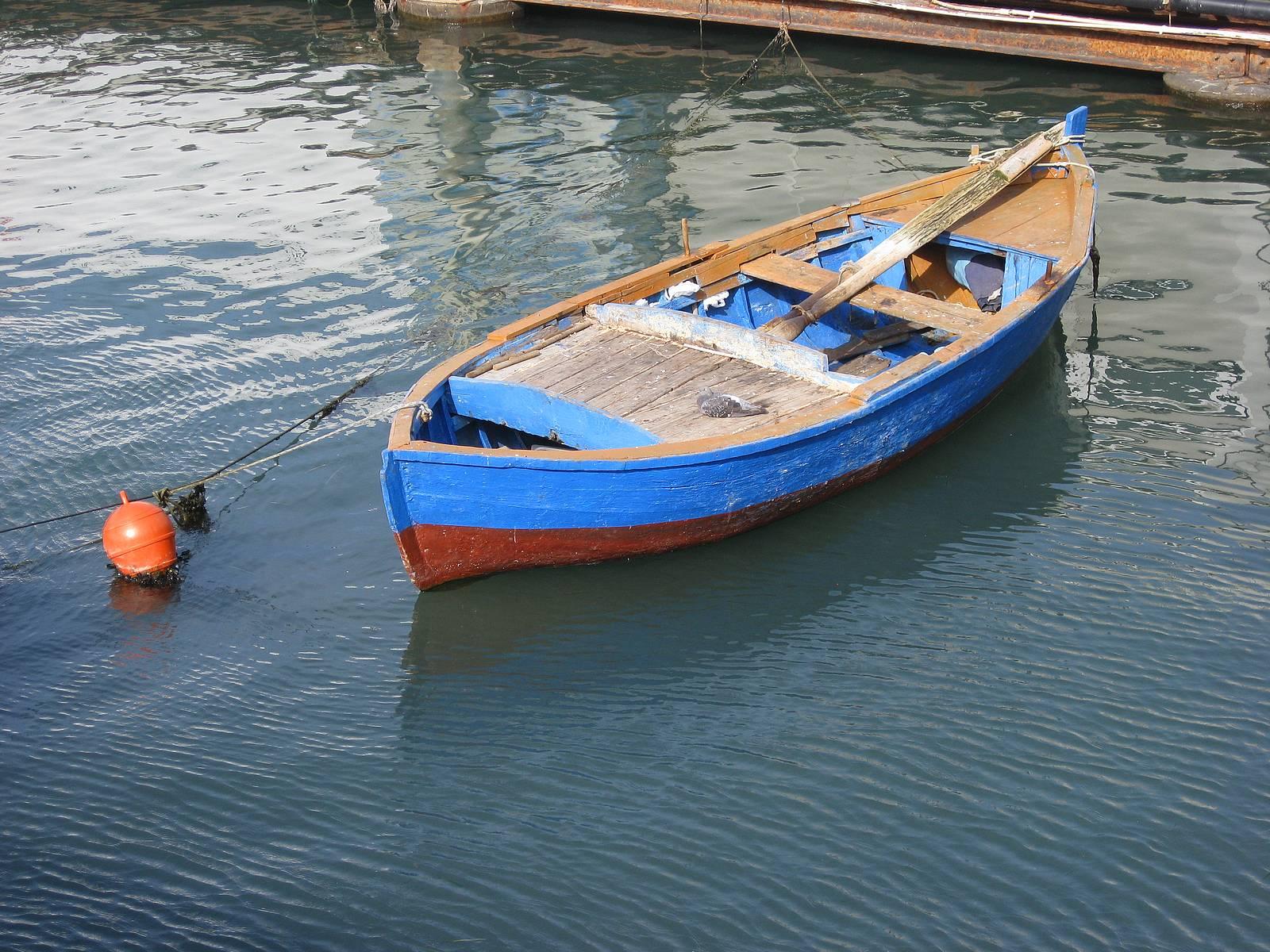 Photo of الدرك البحري يوقف قاربين متلبسين بجني الطحالب خارج الفترة القانونية