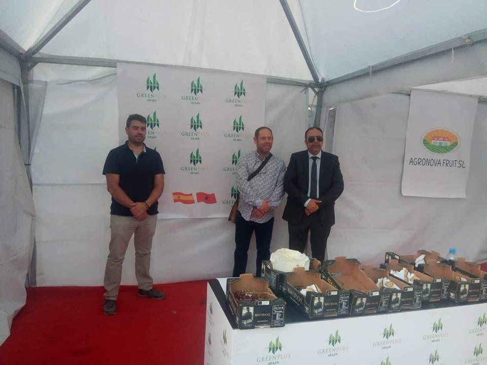 "Photo of خبراء إسبان يستثمرون تجربة 60 سنة في زراعة "" عنب المائدة"" بهوارة"
