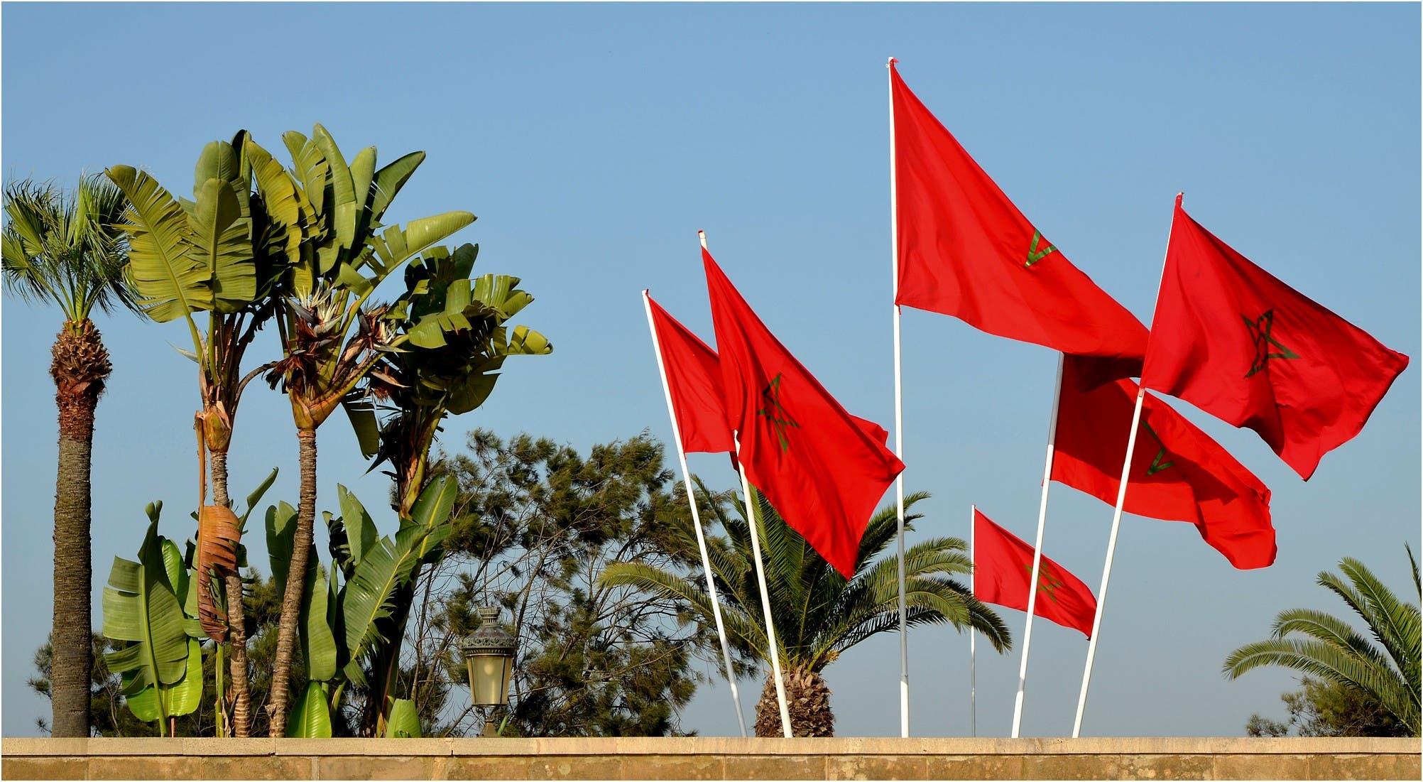 Photo of غرفة التجارة الفلامانية تؤكد على مؤهلات المغرب في مجال الاستثمار