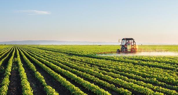 Photo of تقرير: المغرب ضمن دول حسنت محاصيلها بزيادة مستويات الري