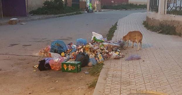 Photo of شوارع و أزقة مدينة صفرو تغرق في النفايات و أوزون خارج التغطية