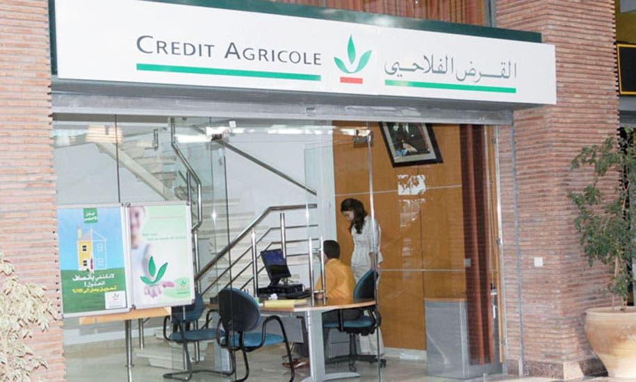 Photo of تعزيز كفاءات القرى يدفع القرض الفلاحي لإطلاق مشاريع مالية مبتكرة