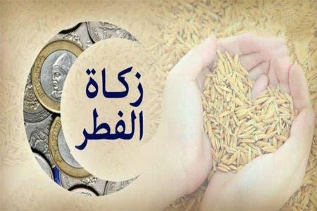 Photo of يهم المواطنين.. المجلس العلمي يحدد قيمة زكاة الفطر