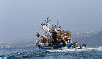 "Photo of ""كورونا"".. استمرار نشاط أرباب المراكب ومعامل صيد السمك السطحي"