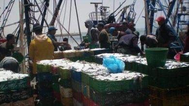 Photo of أزمة كورونا : مهنيو الصيد يثمنون عمل الوزارة والسلطات الولائية بخصوص الاجراءات الاحترازية
