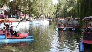 Photo of خرق حالة الطوارئ…اعتقال 40 شخصا بسبب السباحة بمنبع عين الشقف