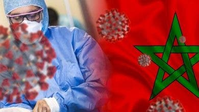 Photo of المغرب يسجيل 56 حالة إصابة مؤكدة جديدة بفيروس كورونا