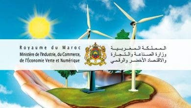 """Photo of وزارة الصناعة والتجارة: إطلاق طلب مشاريع خضراء """"إيكوستارت"""""""