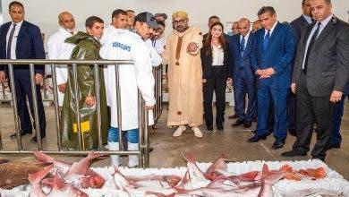 Photo of غرفة الصيد البحري بأكادير: أشرفنا على أزيد من 20 ألف اختبار لكورونا