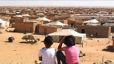 Photo of منظمات دولية تطالب بمساءلة الجزائر بشأن انتهاكات حقوق الإنسان المرتكبة في تندوف