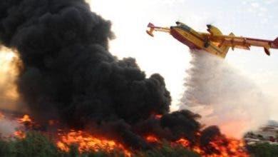 Photo of طنجة : السيطرة على حريق أتى على 36 هكتارا من الغابة الدبلوماسية