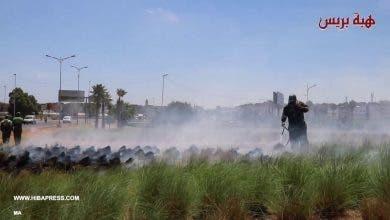 Photo of سيجارة تتسبب في حريق حديقة طريق ولاد زيان