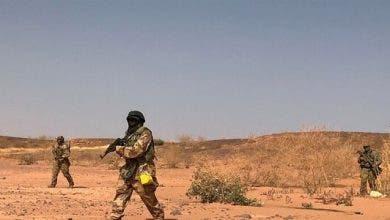Photo of مقتل 6 سياح فرنسيين رميا بالرصاص في النيجر