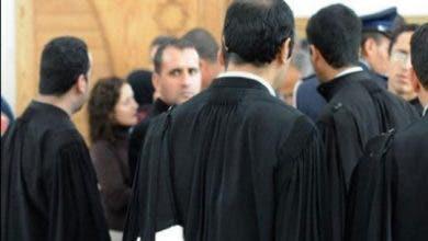 """Photo of المحامون الشباب يستنكرون التطاول على اختصاصات """"البدلة السوداء"""""""