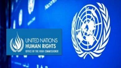 """Photo of المفوضية السامية لحقوق الإنسان تفضح """"تلفيق"""" وكالة الأنباء الجزائرية"""