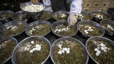 Photo of الصحة العالمية تُقر اختبار أعشاب افريقية لعلاج كورونا